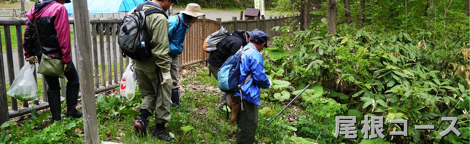 自然散策-尾根コース